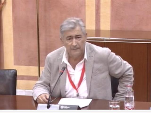 Comisión de Igualdad y Políticas Sociales – Parlamento de Andalucía